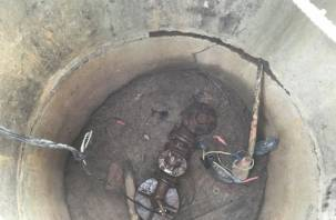 Жители поселка под Смоленском пытаются выжить без воды (фото)