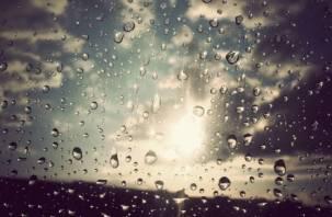 На Смоленщине рабочая неделя начнется с дождя