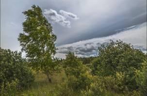 В Смоленской области объявили «желтый» уровень опасности