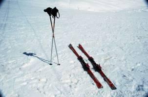 Смолянин ответит за удар лыжной палкой по голове чиновницы