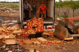 В Рудне уничтожили более 80 тонн яблок