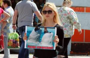 В Смоленске прошел пикет против передвижных дельфинариев (фото, видео)