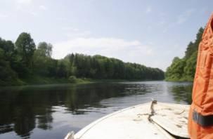 Смоленские спасатели не нашли мальчика, утонувшего в Западной Двине