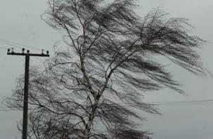 На Смоленщине объявлено штормовое предупреждение