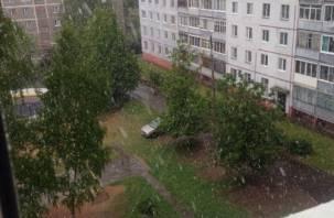 На второй день лета в Смоленской области выпал снег (фото, видео)