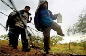 Три иностранца пытались пешком пересечь смоленскую границу