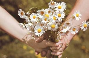 В День семьи, любви и верности в Смоленске пройдет праздничная акция