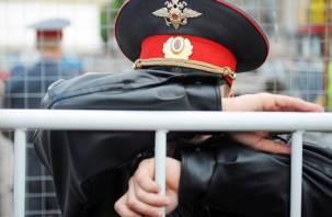 Жителю Вязьмы вынесли приговор за мат и драку с полицейскими