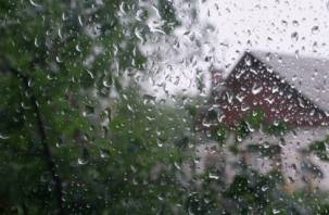 Смоленская область не дождется лета в этом году