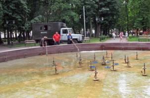 В Смоленске не хватает денег на обслуживание городских фонтанов
