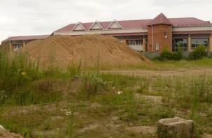 Берег Днепра в Смоленске обезображен… под фермерскую деревню
