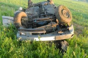 В Починковском районе иномарка врезалась в столб