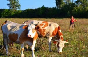 Смолянин до смерти избил пасущую коров женщину