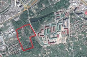 В Смоленском лесопитомнике вместо парка хотят построить жилой массив
