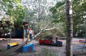 В смоленском детском саду на площадку рухнуло дерево