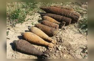 Смоленская область — в лидерах по находкам боеприпасов