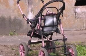 В Дорогобужском районе объявился поджигатель детских колясок