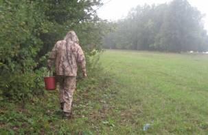 Пропавший в смоленском лесу грибник найден спустя три дня
