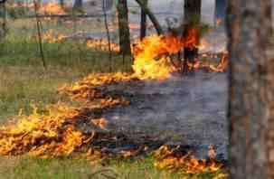 Рослесхоз предупредил смолян о возможных пожарах в эти выходные
