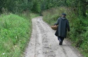 В смоленском лесу потерялся 85-летний пенсионер