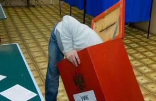 Полиция просит смолян сообщать о правонарушениях в ходе выборов