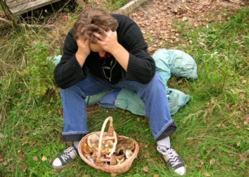 В Дорогобужском районе в лесу пропал грибник