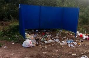 Мусорные баки около озера Ключевое в Смоленске исчезли