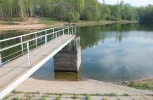 В Смоленске потратят почти миллион на выяснение причин обмеления Реадовского озера