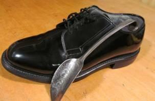 В Рославльском районе нашли труп мужчины с ложкой для обуви