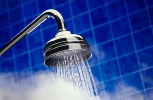 В Смоленске в двух микрорайонах Киселевки восстановили горячее водоснабжение