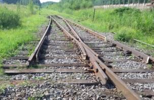 В Смоленской области товарный состав чуть не сошел с рельсов из-за разобранных путей