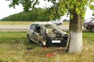 В Вяземском районе легковушка опрокинулась и врезалась в дерево