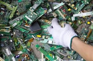 В Смоленской области будут захоранивать сломанные клавиатуры и «мышей»