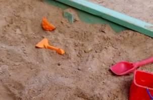 Смоленские дети играют в зловонной песочнице с червями