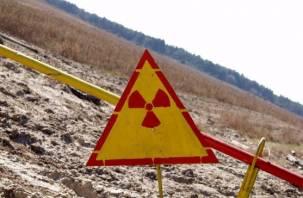 В Беларуси разрешили выращивать продукты и пасти скот у радиоактивной зоны