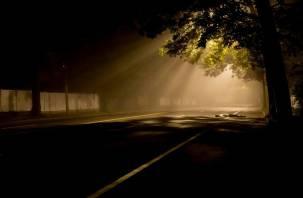 В Смоленском районе водитель минивэна переехал сидящего на дороге мужчину