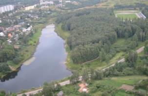 Смоленские следователи начали проверку по факту гибели девочки в озере
