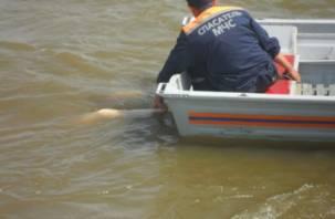 В Смоленской области в озере утонул мужчина