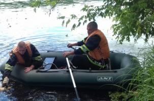 В Смоленском районе из водоема достали утопленника