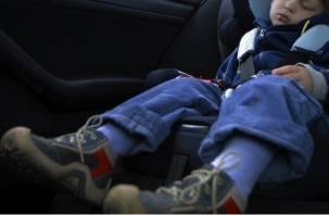 В Велижском районе двухлетний ребенок пострадал в аварии