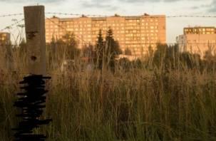 В Смоленской области собаку повесили на столбе