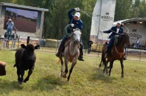 Смоленские ковбои приняли участие в «Русском родео»