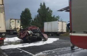 В Сети появилось видео последствий смертельной аварии под Смоленском