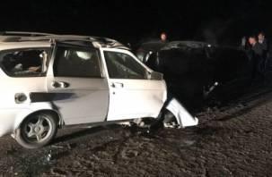 Подробности смертельной аварии в Починковском районе