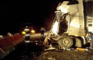 Пять человек погибли в ДТП с микроавтобусом в Смоленской области