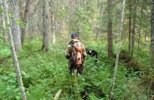 В смоленском лесу третий день ищут грибника-инвалида