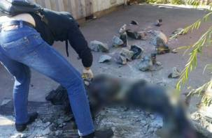 Пропавшую смолянку нашли в бочке, залитой бетоном