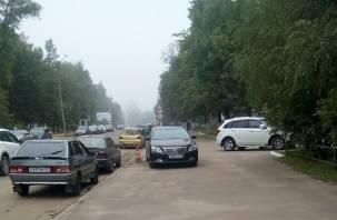 «Брянский» автохам замечен в Смоленске