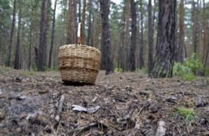 Заблудившуюся в лесу смоленскую пенсионерку нашли мертвой