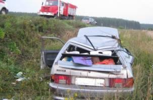 В Смоленской области легковушка улетела в кювет